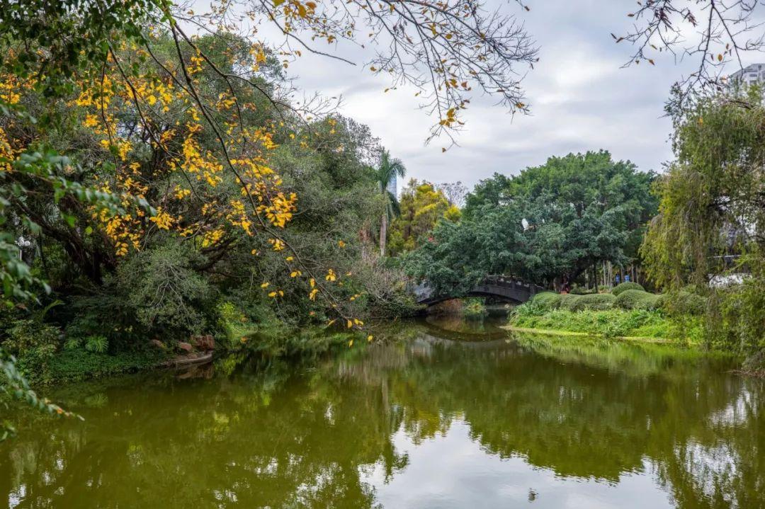 深圳边风景图片